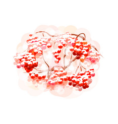 bunch rowan berries from splash watercolors vector image