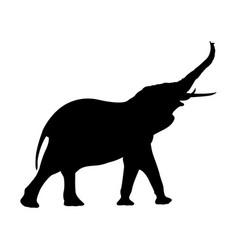 Elephant silhouette image vector