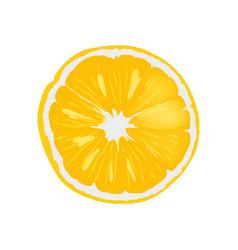 fresh ripe orange juicy round slice vector image