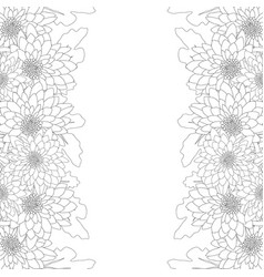 Mum chrysanthemum flower outline border vector