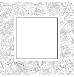 rose hydrangea and ranunculus outline banner card vector image
