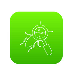search insect icon green vector image