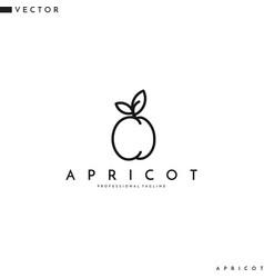 Apricot logo line art vector