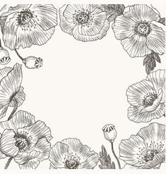 Around of flowers place for text poppy vector
