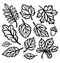 Autumn line leaves set for plotter openwork vector