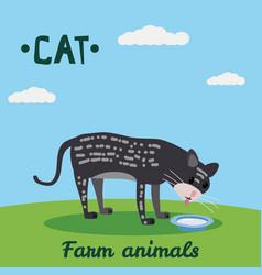 cute cat drink milk farm animal character farm vector image