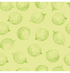 Gooseberries seamless pattern vector image