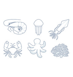 outlines sea creatures vector image