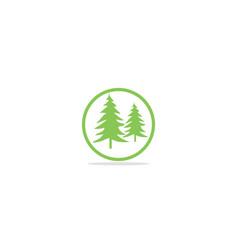 pine tree green nature logo vector image