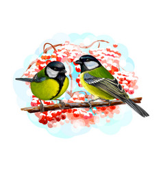 tit birds sitting on a branch on white background vector image