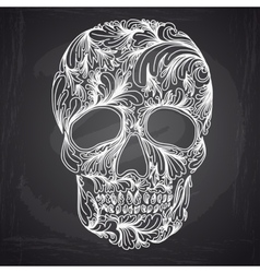 with Hand Drawn Skull vector image