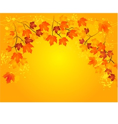 Autumn in gold vector image vector image