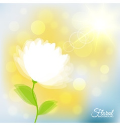 Background with transparent delicate flower vector image