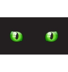 Cat glossy eyes on black background vector image