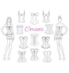 corsets collection with beautiful fashion models vector image