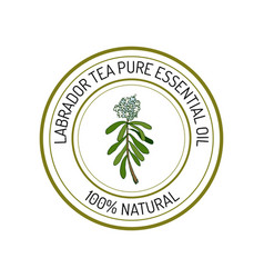 Essential oil label vector