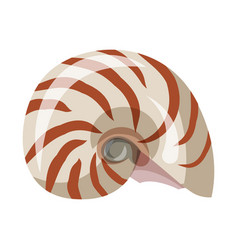 Isolated object seashell and mollusk logo vector