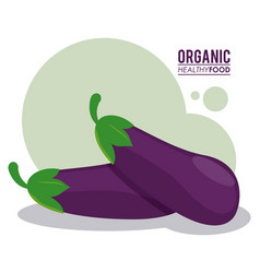 Organic healthy food eggplant nutrition vector