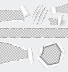 realistic seamless torn paper and scratch claws vector image