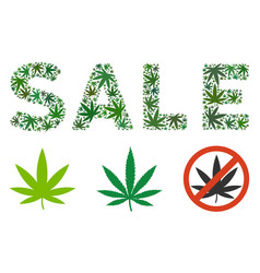 Sale text composition of hemp leaves vector