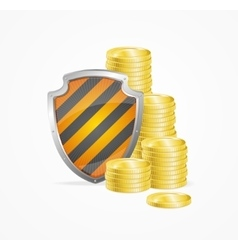Money Safety Concept vector image