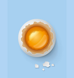 Broken egg with yolk and shell vector