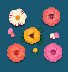 colored camellia flowers with leaves and petals on vector image