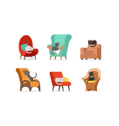 domestic cats resting on soft armchairs set vector image