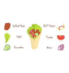 shawarma ingredients flat style vector image