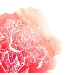 White ink drawn peony on red watercolor vector