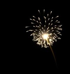 realistic firework golden color vector image vector image