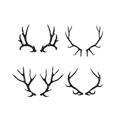 antler set collection vector image