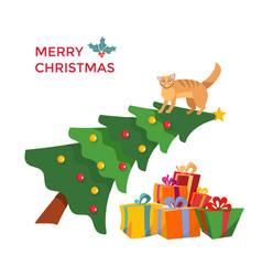 cat climbes on christmas tree and sits vector image