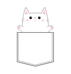 cute cat in pocket holding paw hands up vector image