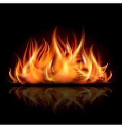 Fire on dark background vector