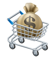 money shopping cart trolley vector image