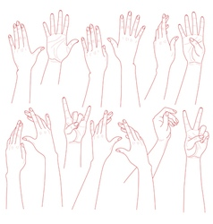 hands set vector image vector image