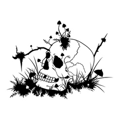 skull and mushrooms vector image vector image