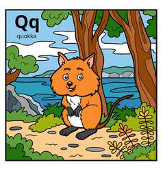 color alphabet for children letter q quokka vector image