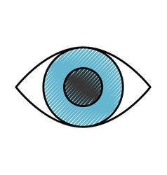 Eye human isolated icon vector