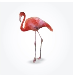 Modern polygon of flamingo vector