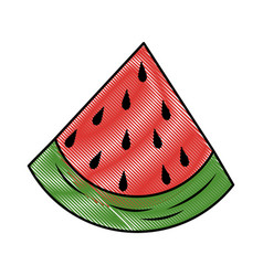 Watermelon fruit food vector