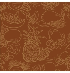 Various tropical fruits vector image