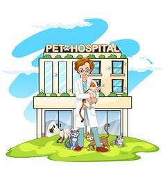 Vet and cats at pet hospital vector image vector image