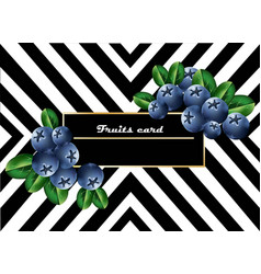 juicy blueberry fruits card abstract striped vector image vector image