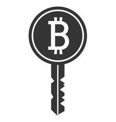 black and white key with bitcoin signal vector image