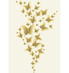 Gold butterfly spring time design vector
