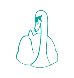 Sketch of hand drawn swan outline contour style vector image