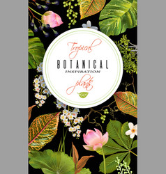 Tropical plants banner vector