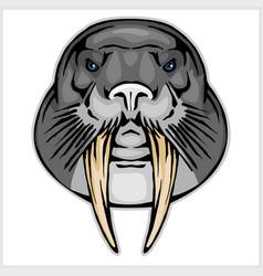 walrus head mascot vector image